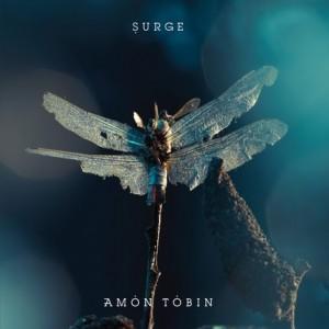 """Amon Tobin - Surge 12"""""""