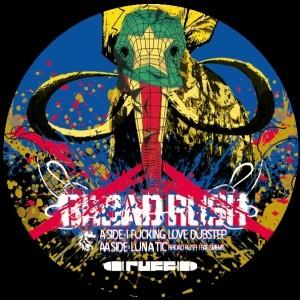 "BROAD RUSH - I fucking love Dubstep... 12"""
